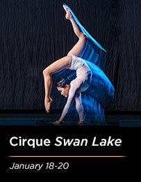 Cirque Swan Lake